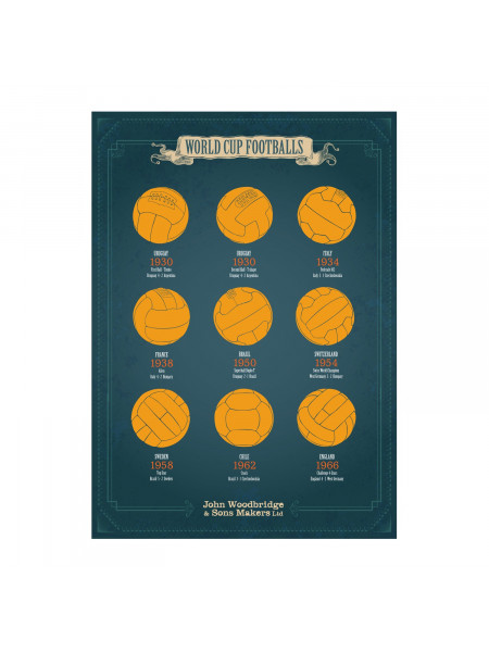 WORLD CUP FOOTBALLS 50x70 CM POSTER