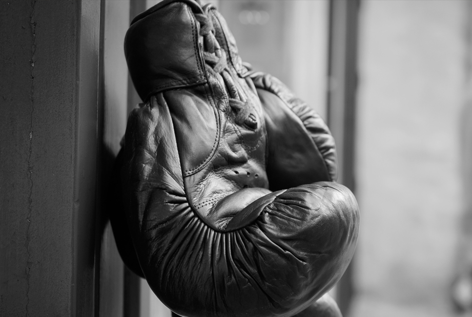 The horsehair padding of boxing gloves